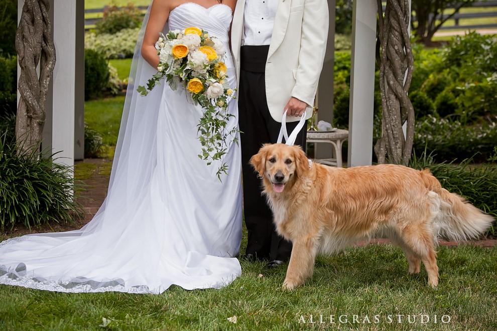 wedding on a horse farm_109